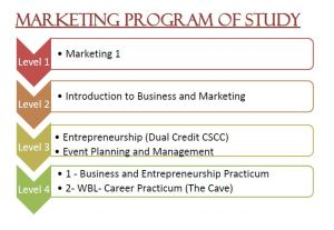 What courses can I take through the Marketing program at Bradley?